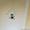 """Продается одноэтажный дом в районе """"Целины"""" - Изображение #2, Объявление #1003352"""