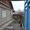 Продам дом в г.Алмалык район кинотеатра Алмалык - Изображение #1, Объявление #1205242