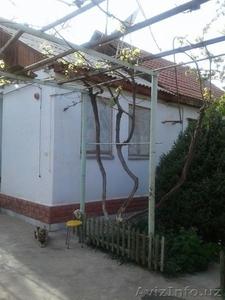 Частный дом на продажу на Телеграфе 6,5 соток участок - Изображение #5, Объявление #1615770